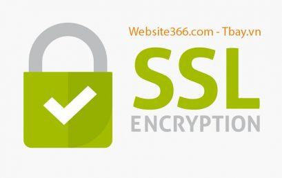 Hướng dẫn cài đặt SSL HTTPS bảo mật Website